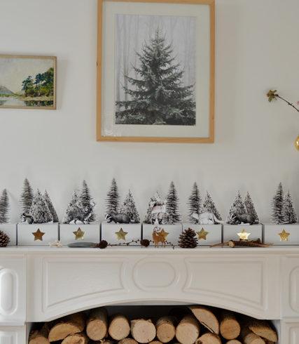 advent calendar 2013 littlegreenshed blog