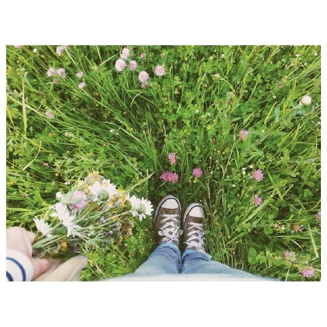 Littlegreenshed Lifestyle blog