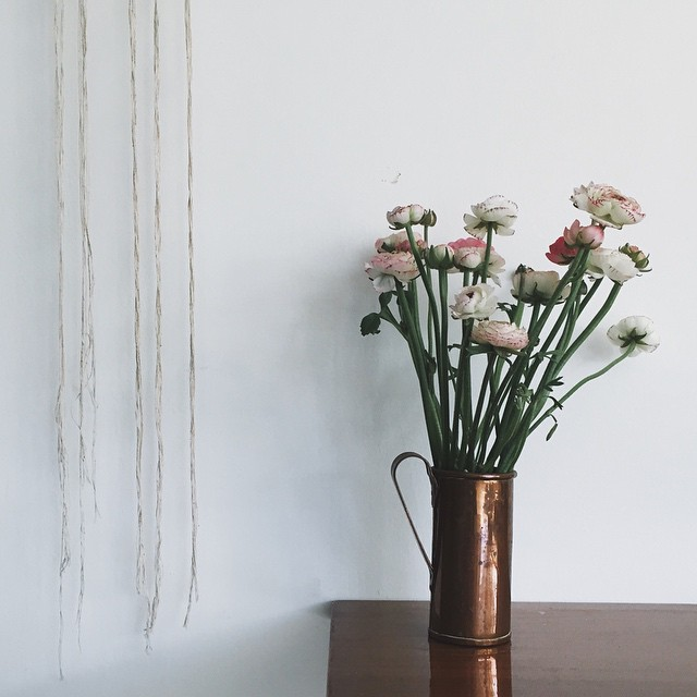 nature in the home, blog, littlegreenshed