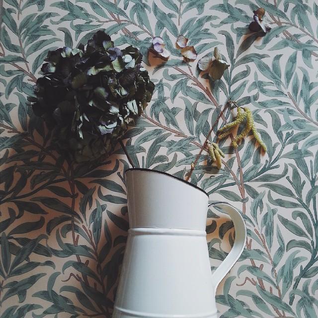 www.littlegreenshedblog.co.uk