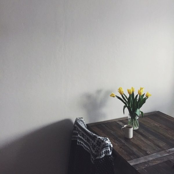 nature in the home, littlegreenshed blog