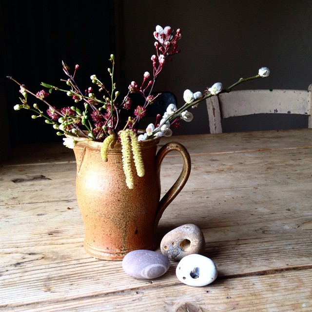 littlegreenshed blog nature in the home