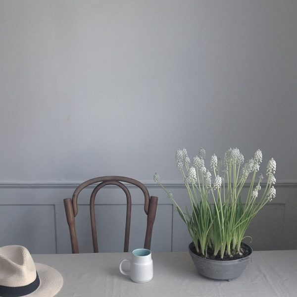 littlegreenshed blog - jing tea and natureinthehome collab