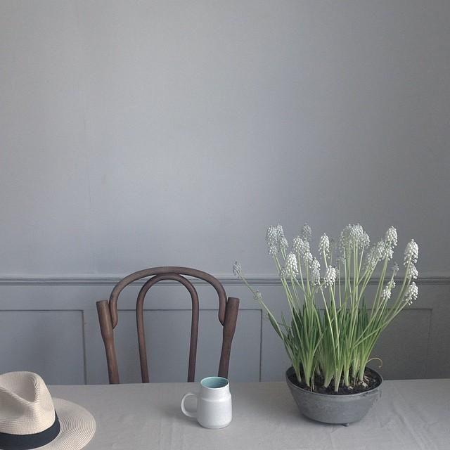 littlegreenshed blog - jing tea and natureinthehome collab