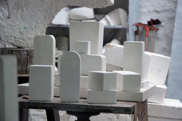 white-stone-barb