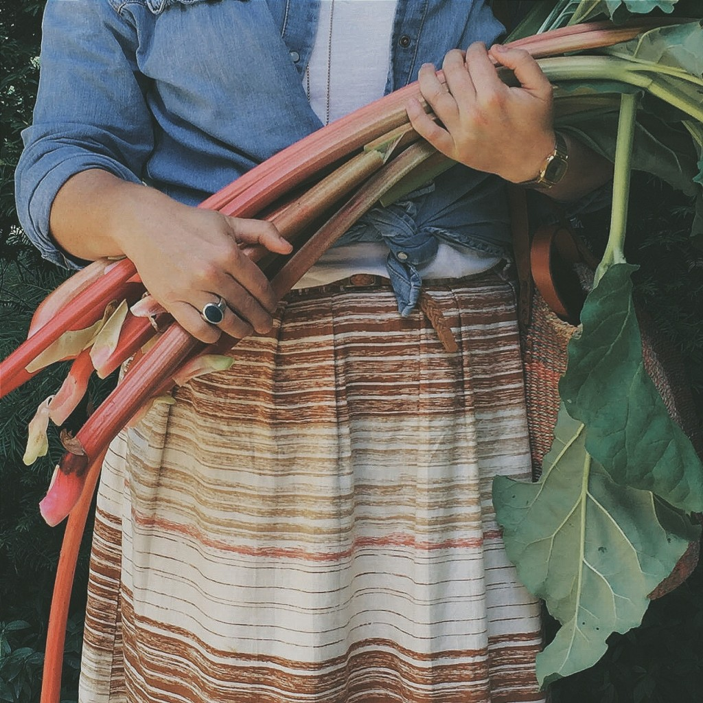 Rhubarb cordial - Littlegreenshed Blog