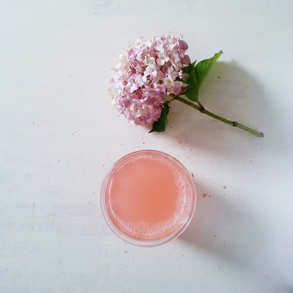 rhubarb cordial - littlegreenshed blog