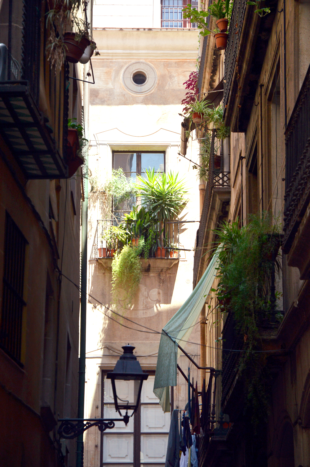 barcelona streets 1 - littlegreenshed blog