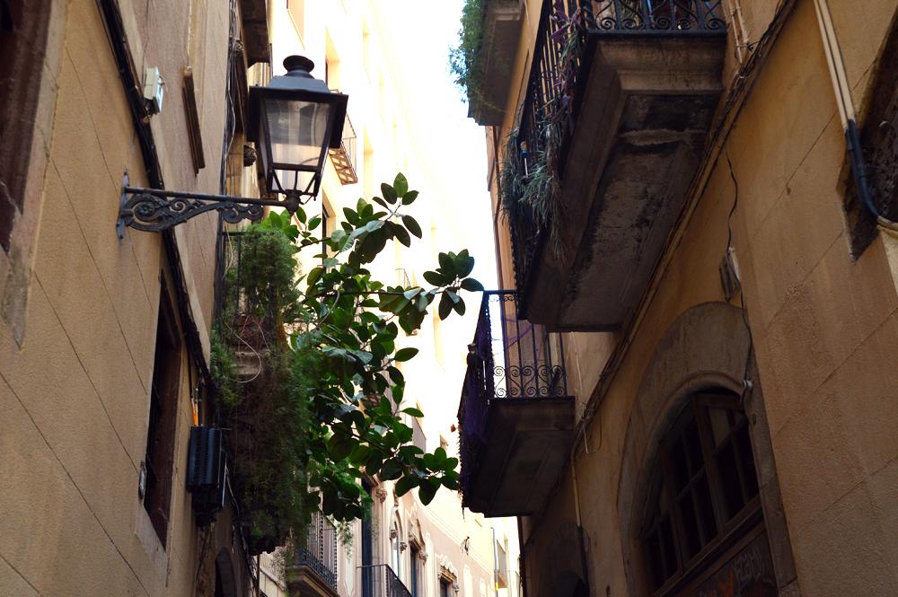 barcelona streets 7 - littlegreenshed blog