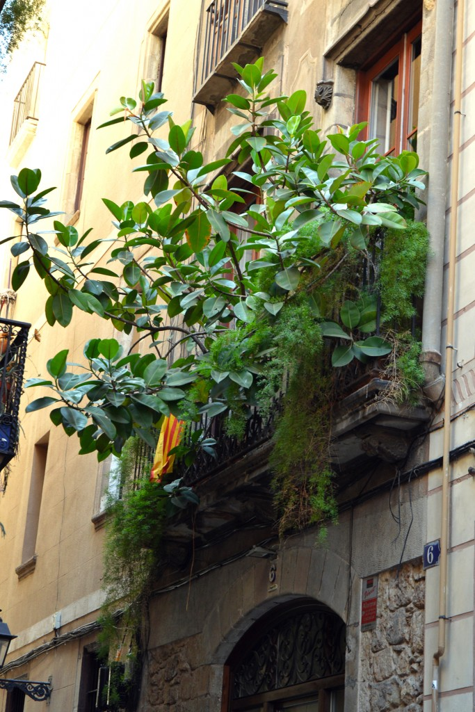 barcelona streets 9 - littlegreenshed blog