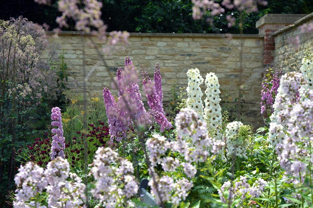 bayntun flowers - littlegreenshed blog 2