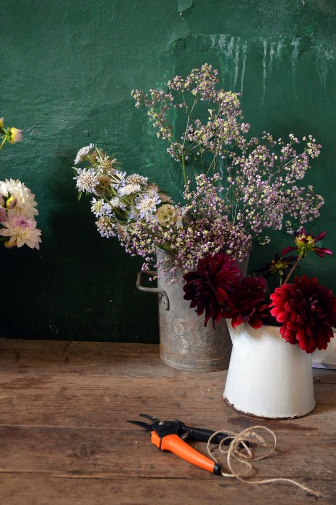 bayntun flowers - littlegreenshed blog 3