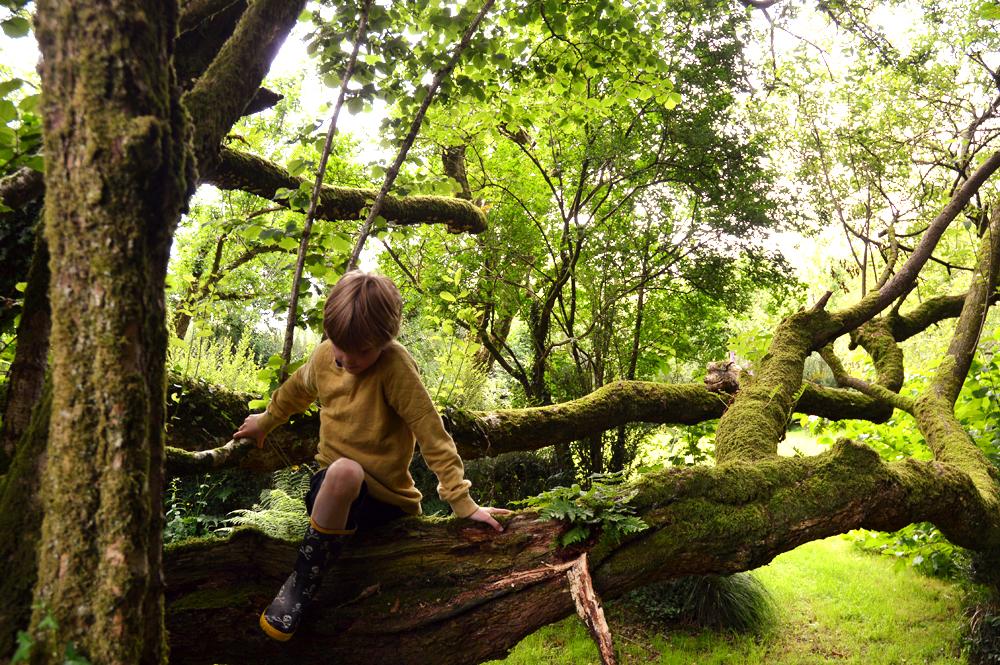 the welsh house littlegreenshed blog 8