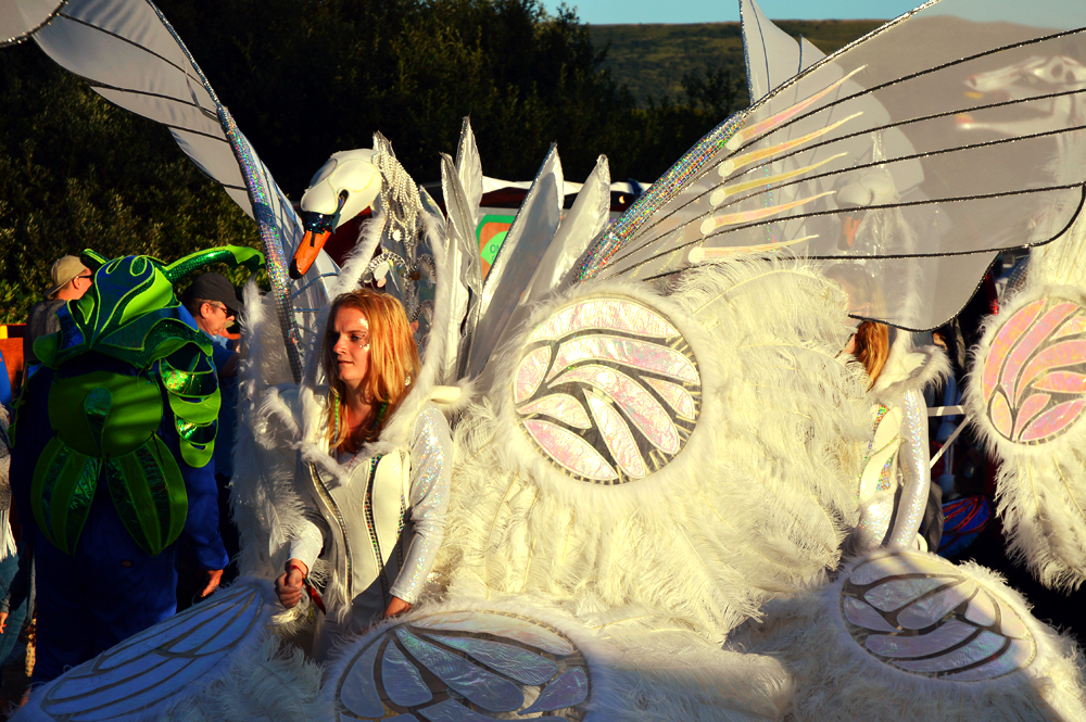 camp bestival 2015 highlights littlegreenshed blog