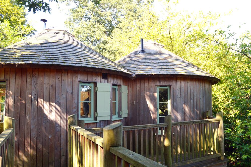 Littlegreenshed blog canopy & stars treehouse