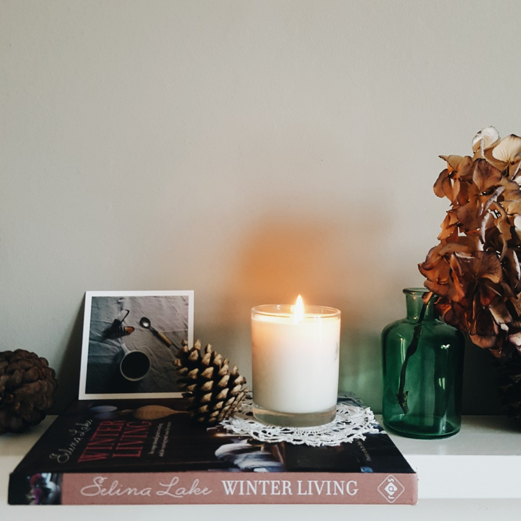 Littlegreenshed Blog Selina Lake Winter Living book