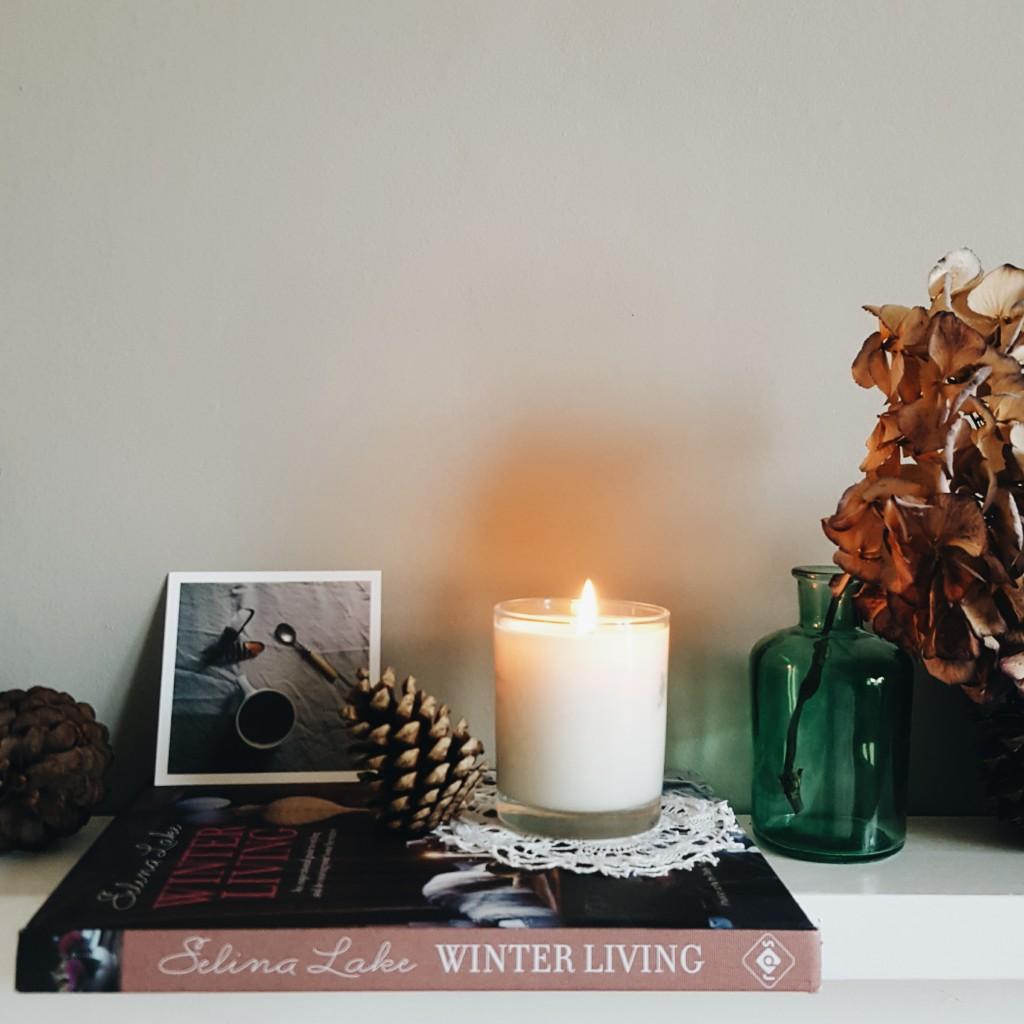 Littlegreenshed Blog Selina Lake Winter Living book