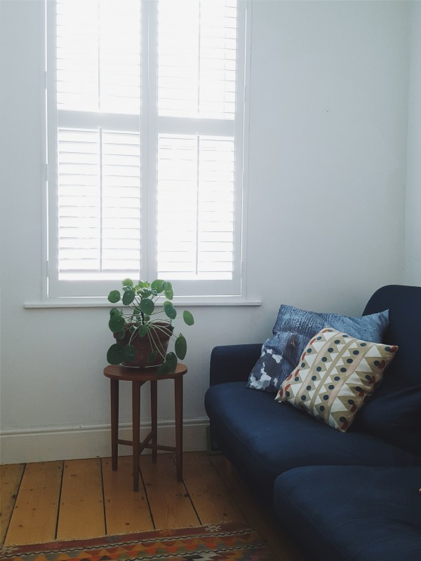 Littlegreenshed blog - shutters with Luxaflex