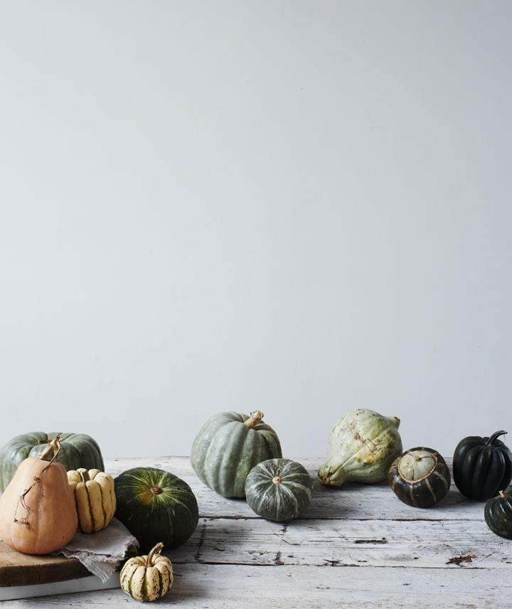 Littlegreenshed UK Lifestyle blog - Autumn Winter