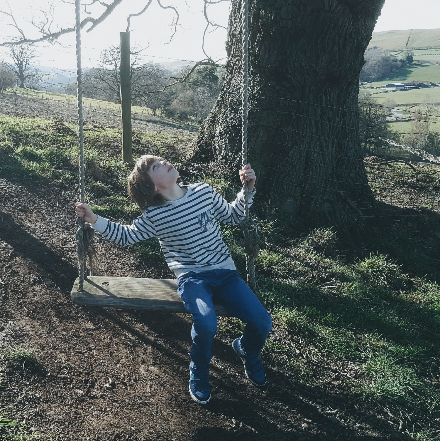 Littlegreenshed blog wild meadow epic swing