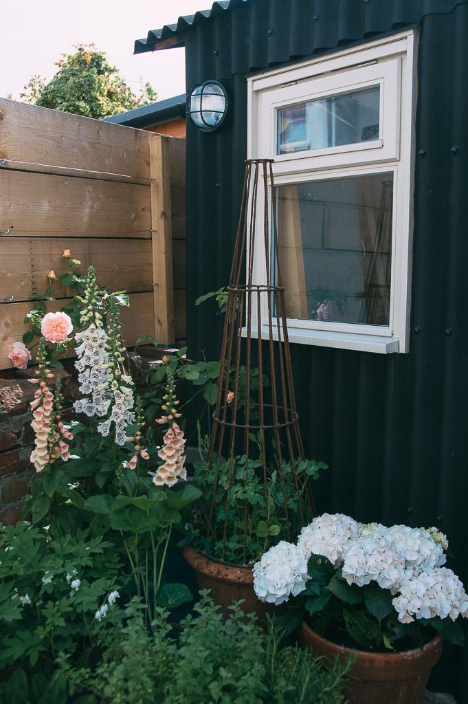 Lou Archell Back Yard May 2016 b&q