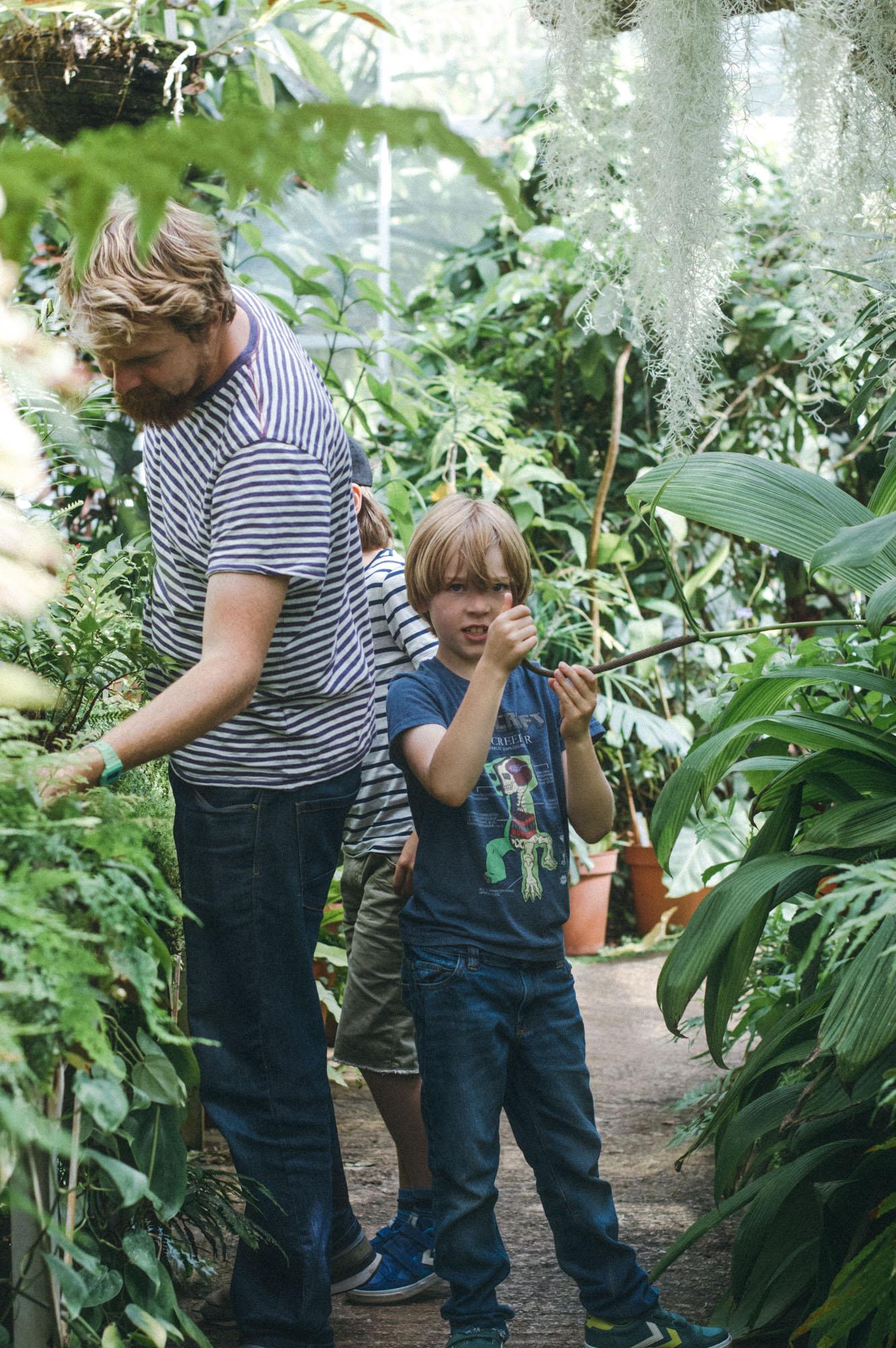 Lou Archell Bristol Botanical Gardens August 2016-25