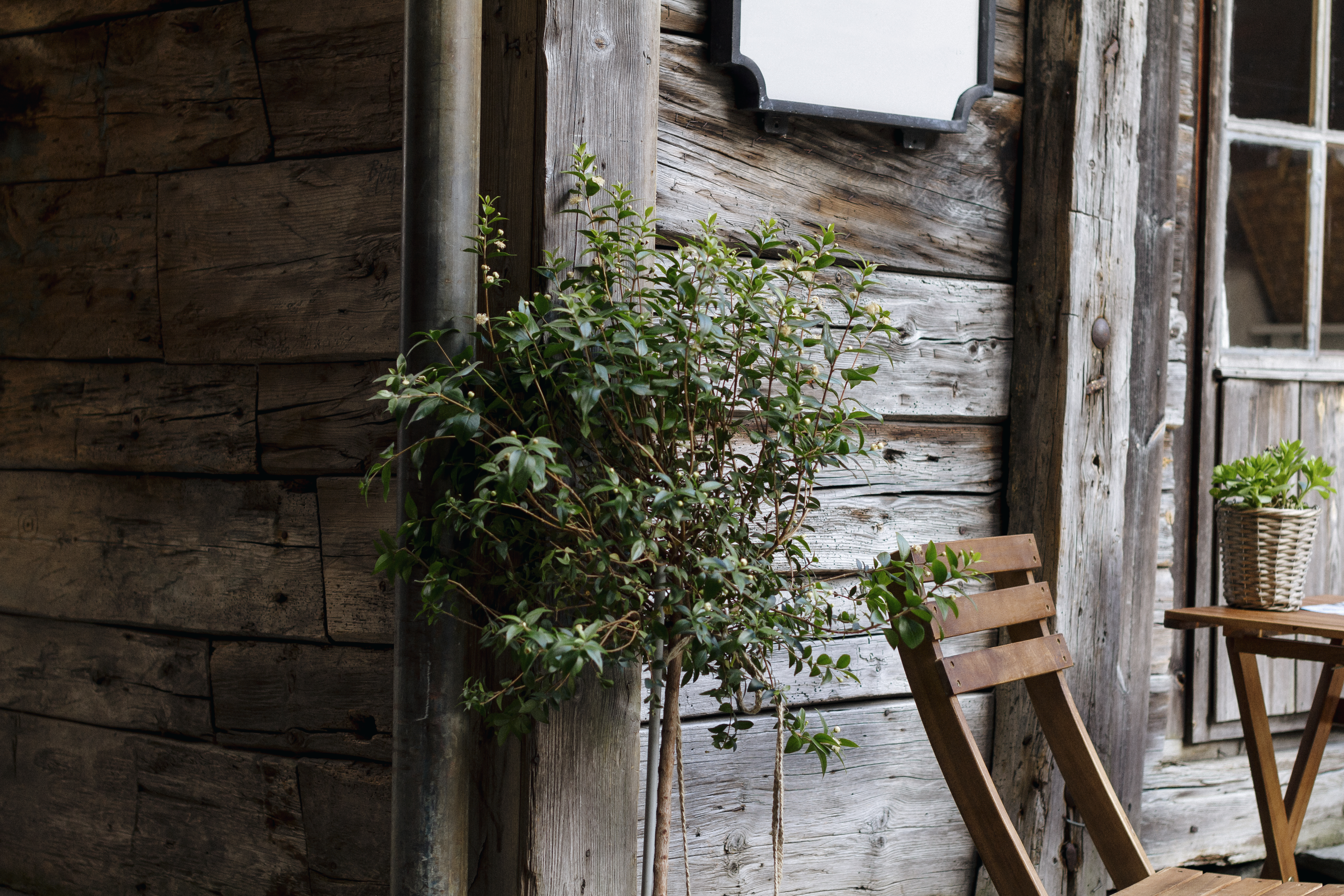 unsplash garden shed
