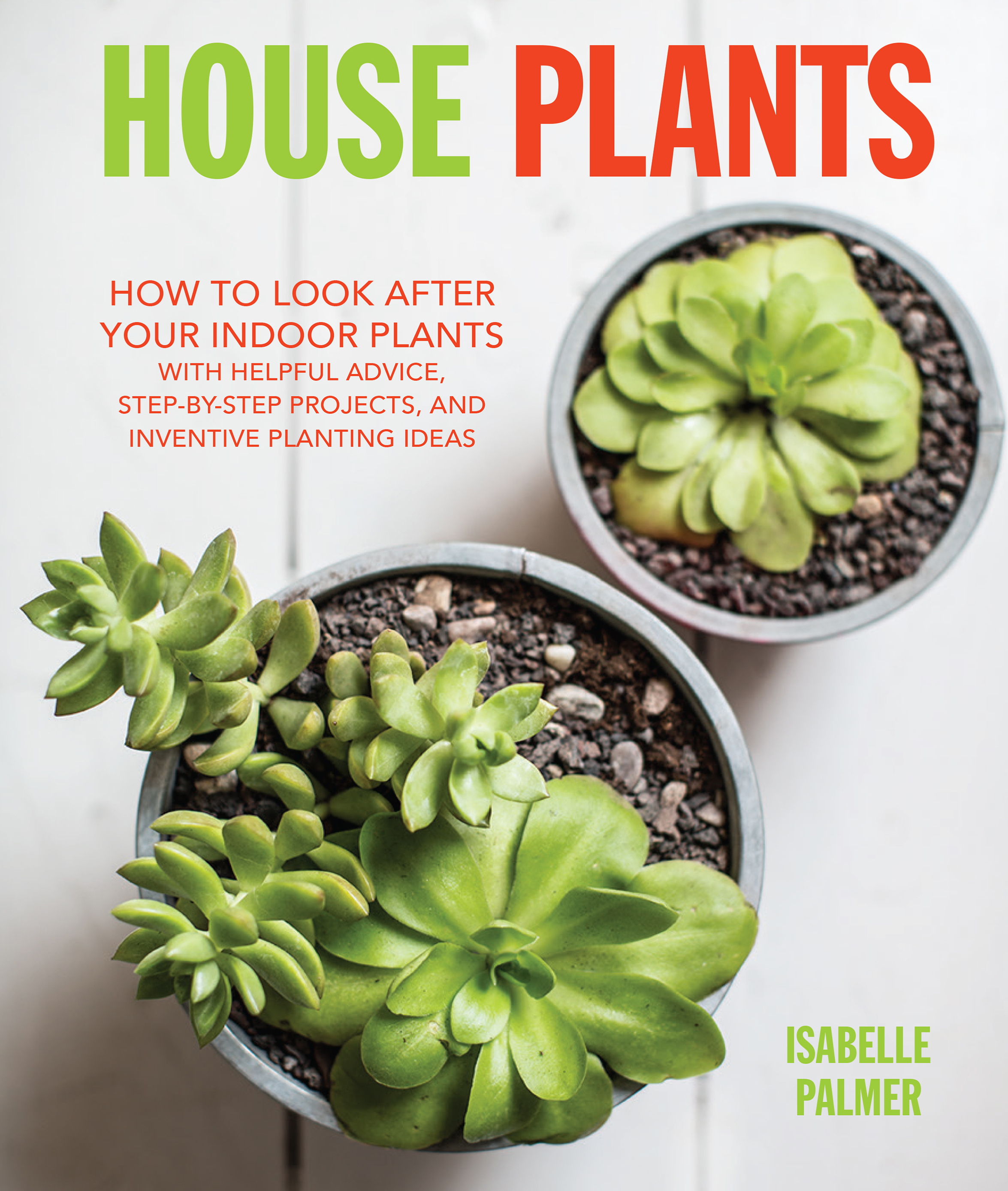House Plants by Isabelle Palmer Littlegreenshed Blog