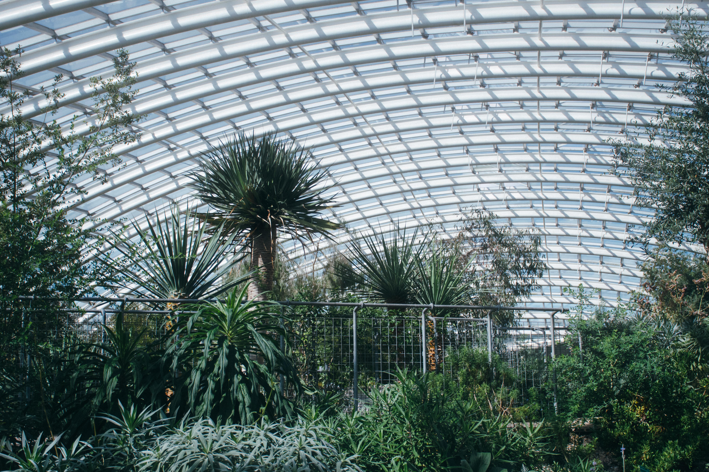 national botanic garden wales littlegreenshed