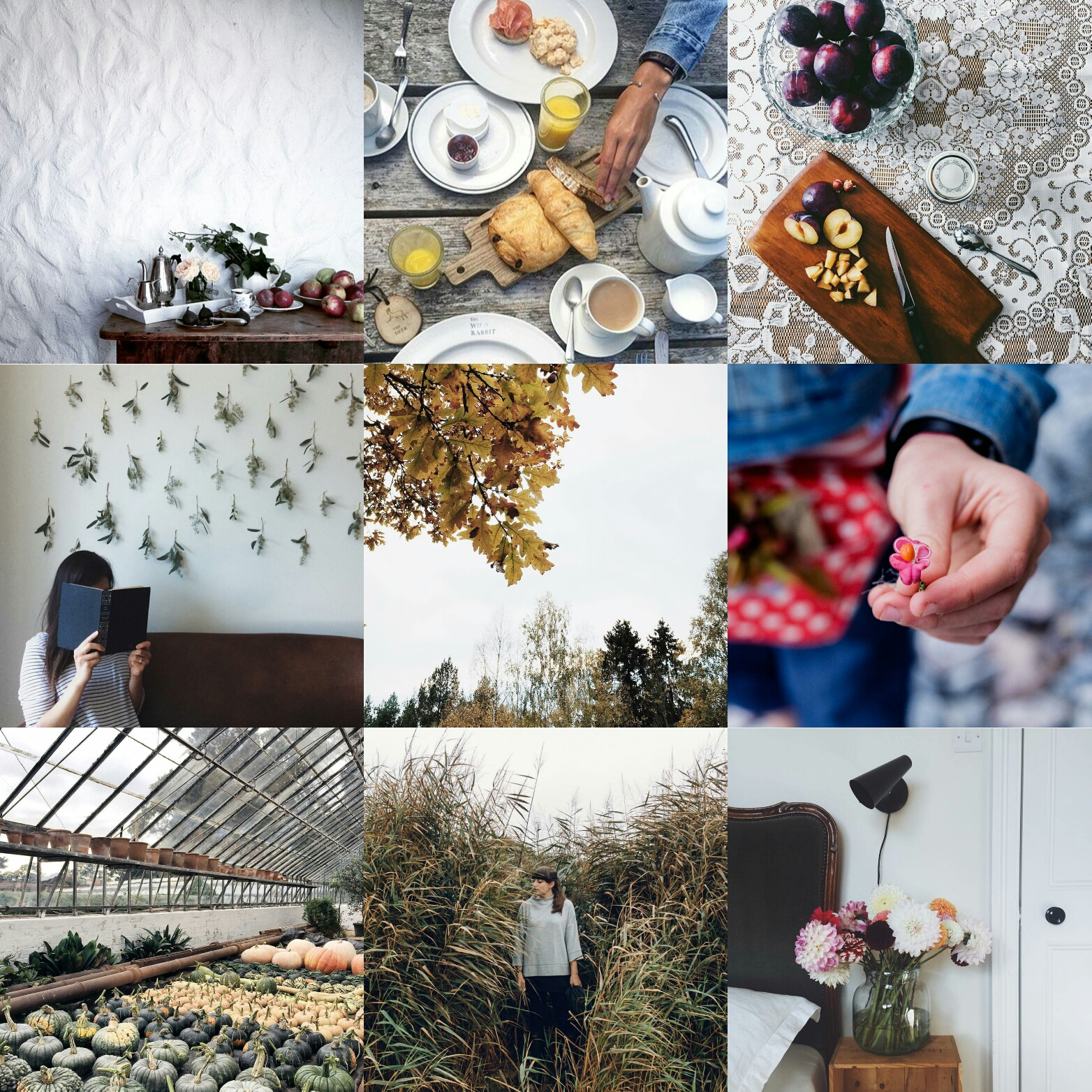 anatural_autumn littlegreenshed blog