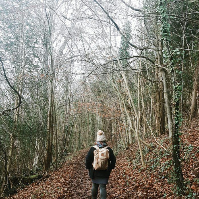 Anatural_midwinter littlegreenshed blog