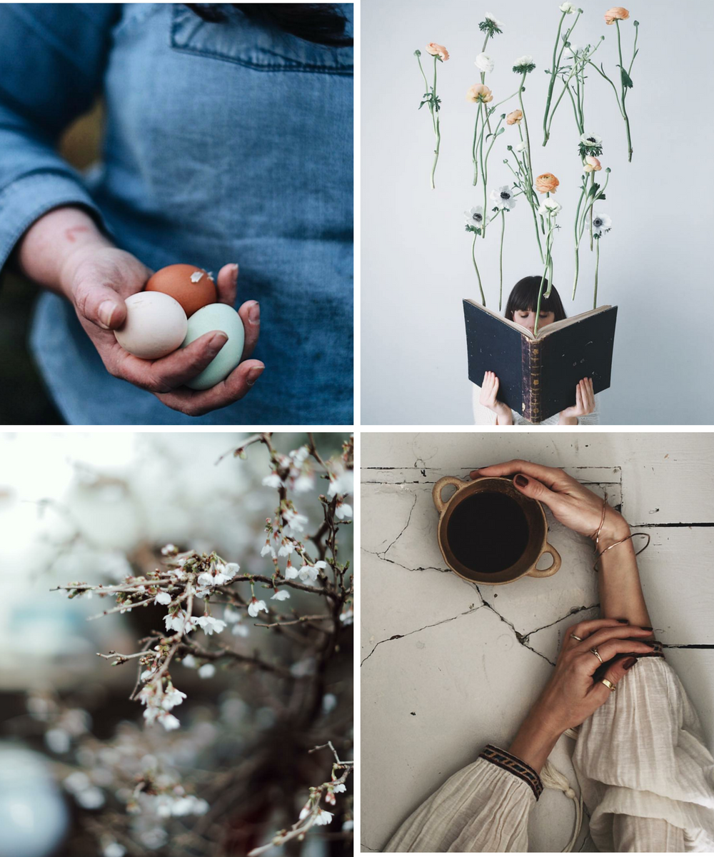 instagram march favourite feeds